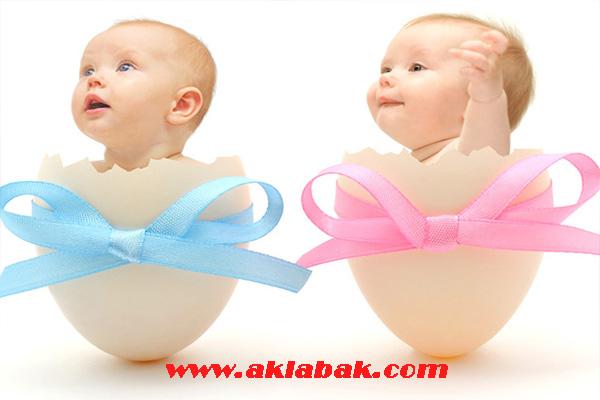 tüp bebek tedavisi, tüp bebek tedavisi başarı oranı, tüp bebek tedavisi nasıl yapılır