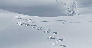 rüyada kar görmek, rüyada görülen karın anlamı, rüyada kar görmek ne demek